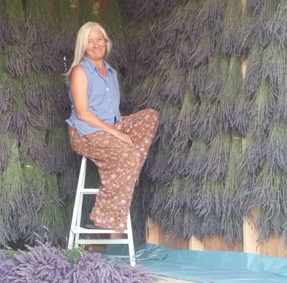 Lavender Lori Parr Picture
