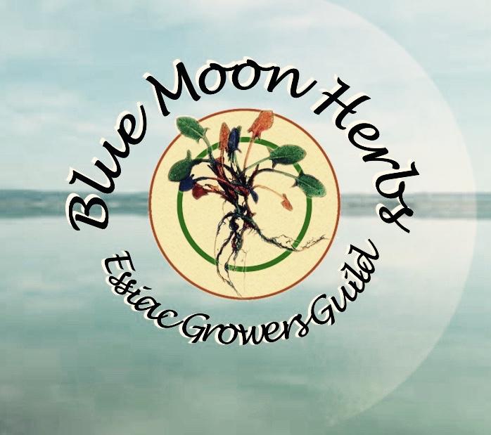"Blue Moon Herbs - Essiac Tea ""Good all over again"""
